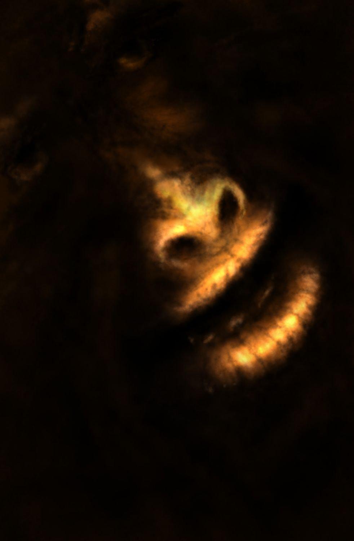 angeregte Gespräche mit meinem Affen bei Kerzenschein
